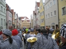 Faschingsumzug in Donauwörth am 22.2.09